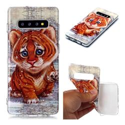 Cute Tiger Baby Soft TPU Cell Phone Back Cover for Samsung Galaxy S10 Plus(6.4 inch)