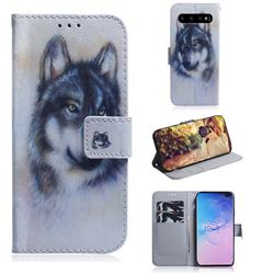 Snow Wolf PU Leather Wallet Case for Samsung Galaxy S10 Plus(6.4 inch)