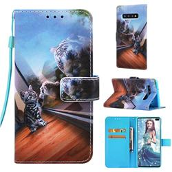 Mirror Cat Matte Leather Wallet Phone Case for Samsung Galaxy S10 Plus(6.4 inch)