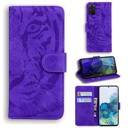 Intricate Embossing Tiger Face Leather Wallet Case for Samsung Galaxy S20 Plus / S11 - Purple