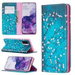 Plum Blossom Slim Magnetic Attraction Wallet Flip Cover for Samsung Galaxy S20