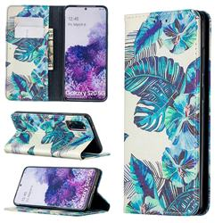 Blue Leaf Slim Magnetic Attraction Wallet Flip Cover for Samsung Galaxy S20