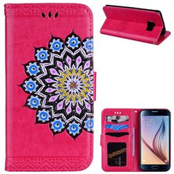 Datura Flowers Flash Powder Leather Wallet Holster Case for Samsung Galaxy S6 Edge G925 - Rose