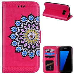 Datura Flowers Flash Powder Leather Wallet Holster Case for Samsung Galaxy S7 G930 - Rose
