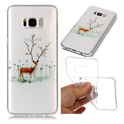 Branches Elk Super Clear Soft TPU Back Cover for Samsung Galaxy S8
