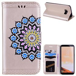 Datura Flowers Flash Powder Leather Wallet Holster Case for Samsung Galaxy S8 - Golden