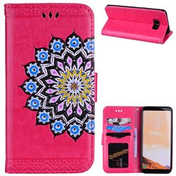 Datura Flowers Flash Powder Leather Wallet Holster Case for Samsung Galaxy S8 - Rose
