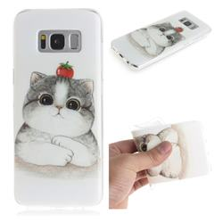 Cute Tomato Cat IMD Soft TPU Cell Phone Back Cover for Samsung Galaxy S8 Plus S8+