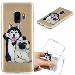 Selfie Dog Clear Varnish Soft Phone Back Cover for Samsung Galaxy S9