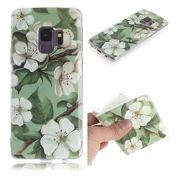 Watercolor Flower IMD Soft TPU Cell Phone Back Cover for Samsung Galaxy S9