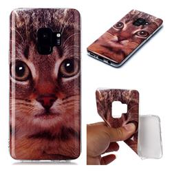 Garfield Cat Soft TPU Cell Phone Back Cover for Samsung Galaxy S9