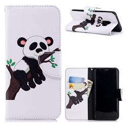 Tree Panda Leather Wallet Case