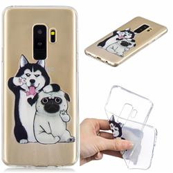 Selfie Dog Clear Varnish Soft Phone Back Cover for Samsung Galaxy S9 Plus(S9+)