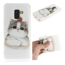 Cute Tomato Cat IMD Soft TPU Cell Phone Back Cover for Samsung Galaxy A8 2018 A530