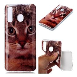 Garfield Cat Soft TPU Cell Phone Back Cover for Samsung Galaxy A20