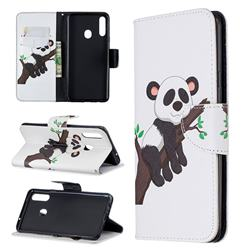 Tree Panda Leather Wallet Case for Samsung Galaxy A20s