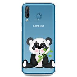 Bamboo Panda Clear Varnish Soft Phone Back Cover for Samsung Galaxy M30