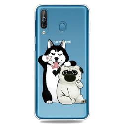 Selfie Dog Clear Varnish Soft Phone Back Cover for Samsung Galaxy M30