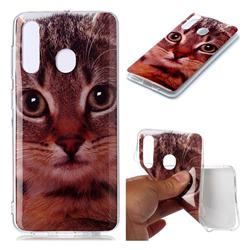 Garfield Cat Soft TPU Cell Phone Back Cover for Samsung Galaxy M40