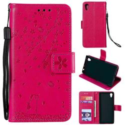 Embossing Cherry Blossom Cat Leather Wallet Case for Sony Xperia XA1 - Rose
