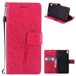 Embossing Butterfly Tree Leather Wallet Case for Sony Xperia E5 - Rose