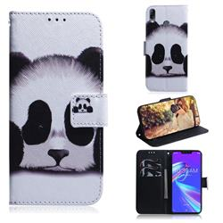 Sleeping Panda PU Leather Wallet Case for Asus Zenfone Max (M2) ZB633KL