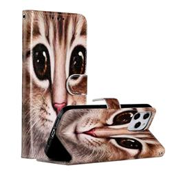 Coffe Cat Smooth Leather Phone Wallet Case for iPhone 12 Pro Max (6.7 inch)