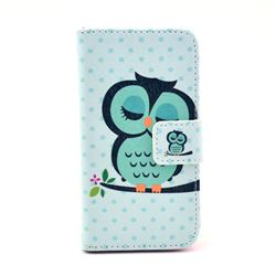 Sweet Owl Leather Wallet Case for iPhone 4s / iPhone 4