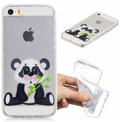 Bamboo Panda Clear Varnish Soft Phone Back Cover for iPhone SE 5s 5
