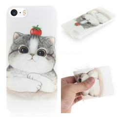 Cute Tomato Cat IMD Soft TPU Cell Phone Back Cover for iPhone SE 5s 5
