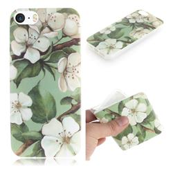 Watercolor Flower IMD Soft TPU Cell Phone Back Cover for iPhone SE 5s 5