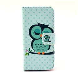 Sweet Owl Leather Wallet Case for iPhone 5c