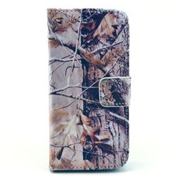 Autumn Tree Leather Flip Wallet Case Cover for iPhone 5c