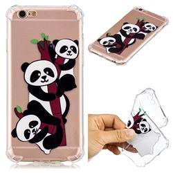 Three Pandas Anti-fall Clear Varnish Soft TPU Back Cover for iPhone 6s Plus / 6 Plus 6P(5.5 inch)