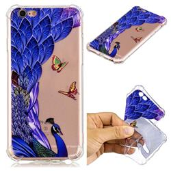 Peacock Butterfly Anti-fall Clear Varnish Soft TPU Back Cover for iPhone 6s Plus / 6 Plus 6P(5.5 inch)