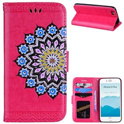 Datura Flowers Flash Powder Leather Wallet Holster Case for iPhone 6s Plus / 6 Plus 6P(5.5 inch) - Rose
