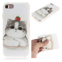 Cute Tomato Cat IMD Soft TPU Cell Phone Back Cover for iPhone 8 / 7 (4.7 inch)