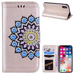 Datura Flowers Flash Powder Leather Wallet Holster Case for iPhone XS / X / 10 (5.8 inch) - Golden