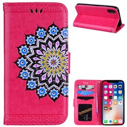 Datura Flowers Flash Powder Leather Wallet Holster Case for iPhone XS / X / 10 (5.8 inch) - Rose