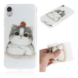 Cute Tomato Cat IMD Soft TPU Cell Phone Back Cover for iPhone Xr (6.1 inch)