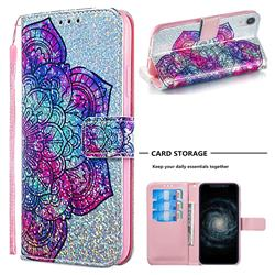 Glutinous Flower Sequins Painted Leather Wallet Case for iPhone Xr (6.1 inch)