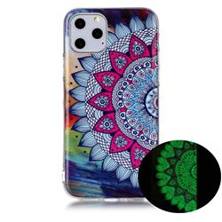 Colorful Sun Flower Noctilucent Soft TPU Back Cover for iPhone 11 Pro (5.8 inch)