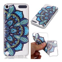 Peacock flower Super Clear Soft TPU Back Cover for iPod Touch 5 6